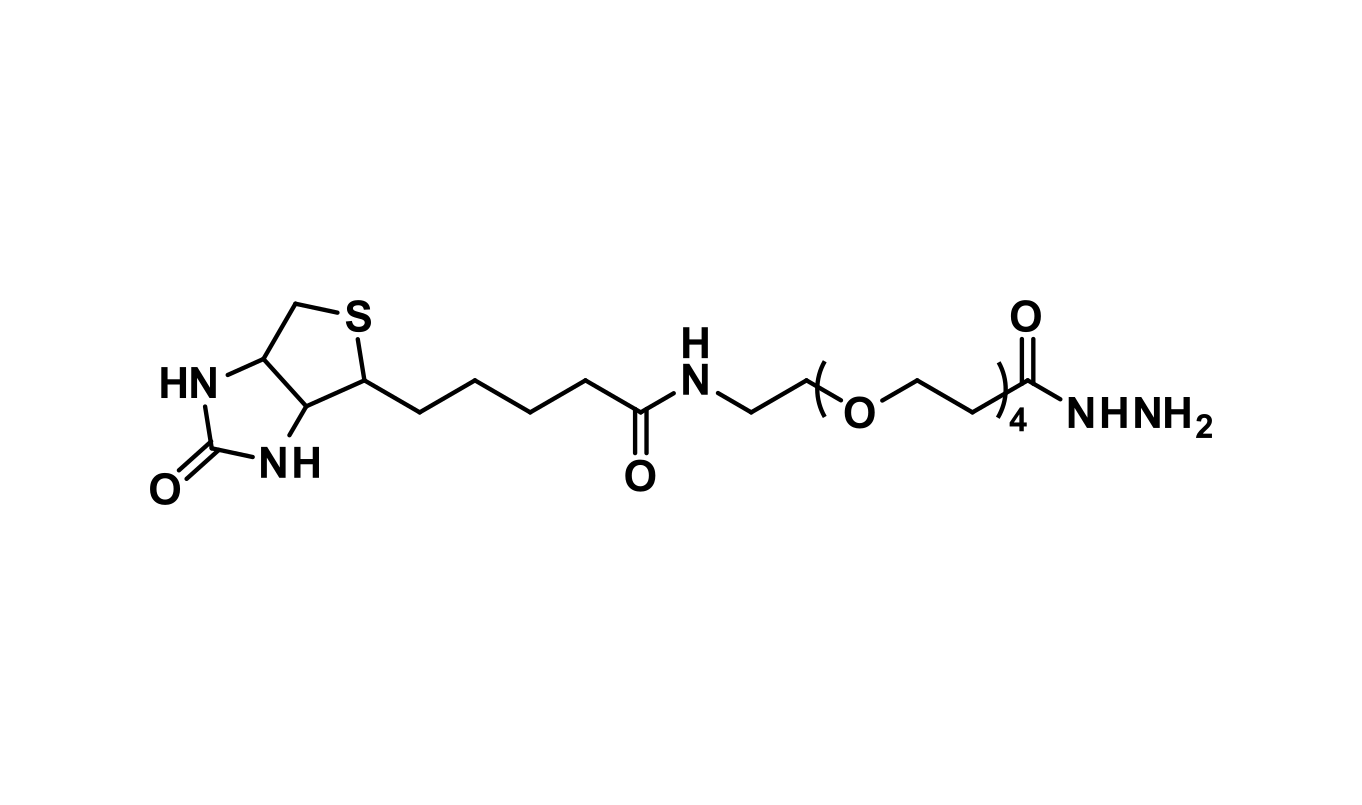 Biotin-dPEG®₄-hydrazide