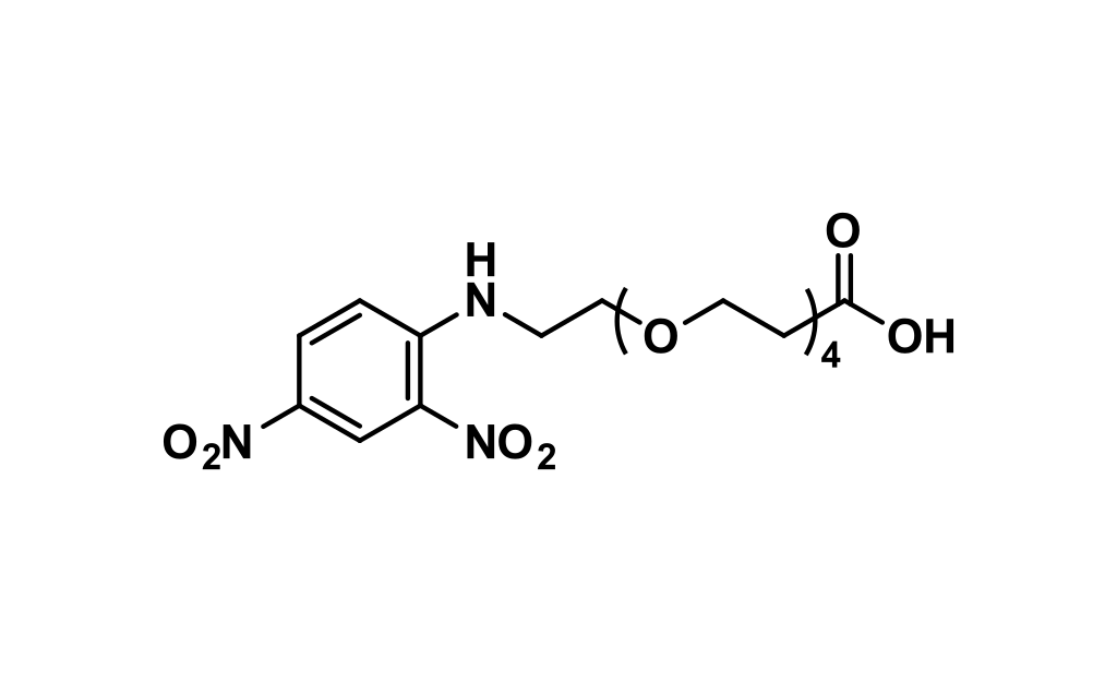 DNP-dPEG®₄-acid