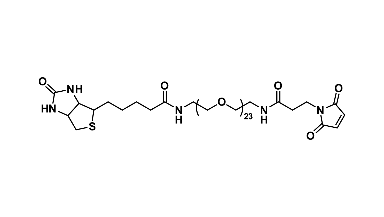 Biotin-dPEG®₂₃-MAL