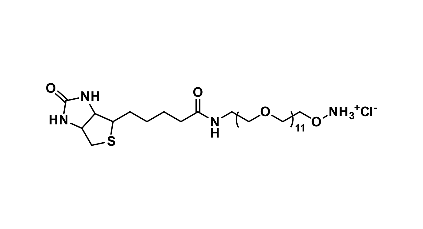 Biotin-dPEG®₁₁-oxyamine. HCl