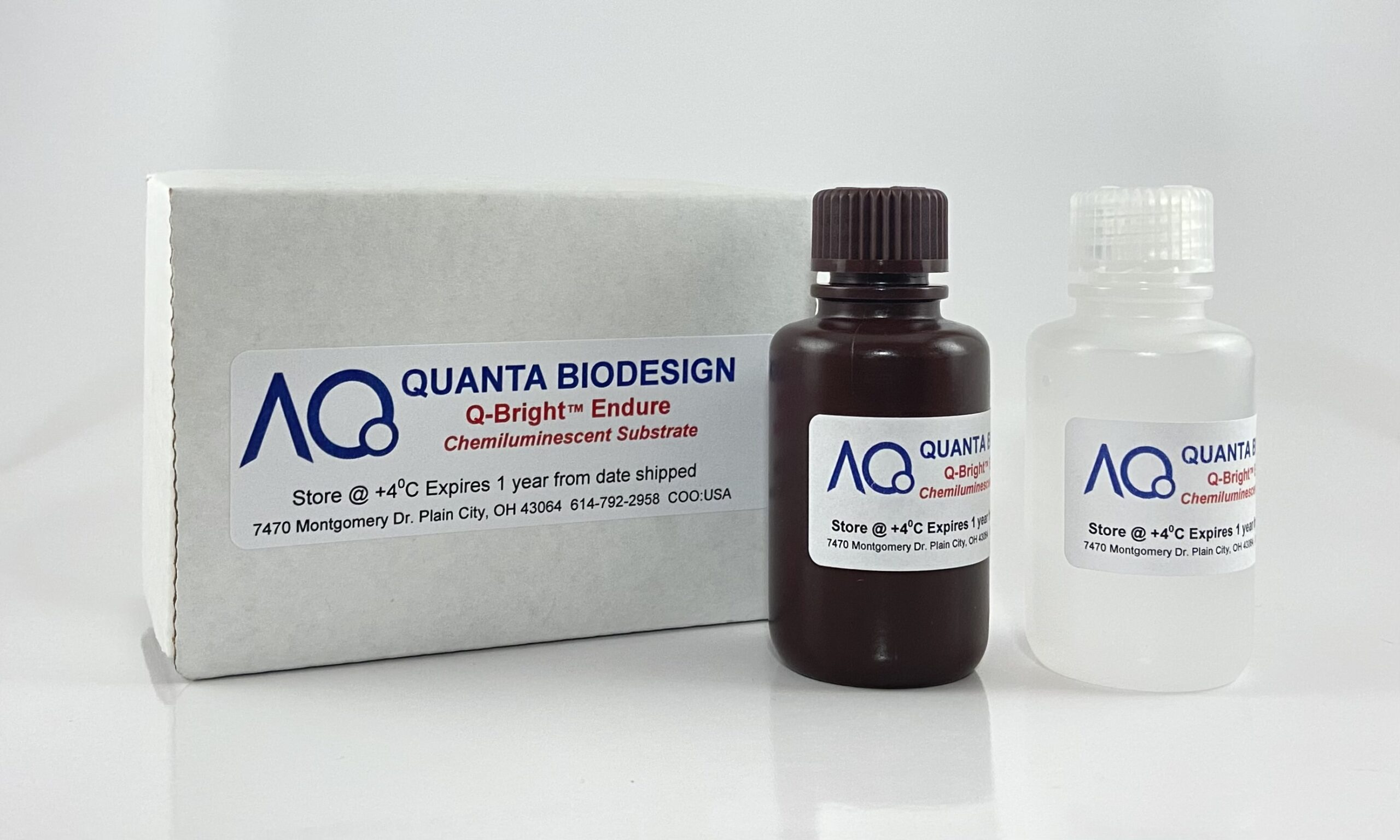 Q-Bright Endure Chemiluminescent Detection Kit