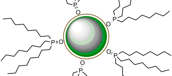Schematic drawing of a TOPO coated green quantum dot, approximately 3 nm in diameter.
