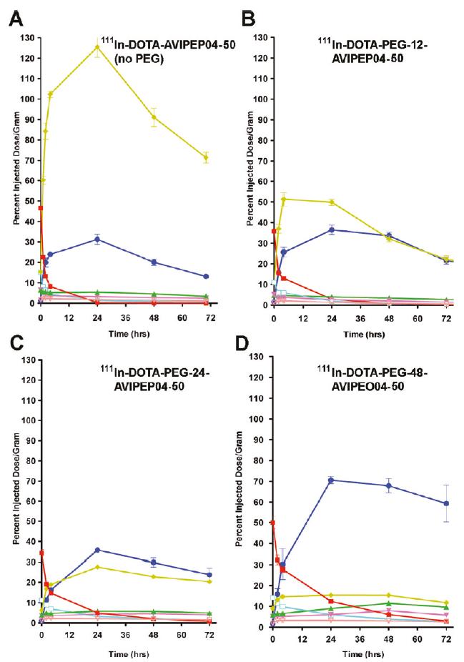 Biodistribution over time of DOTA-PEGn-AVP04-50 diabody conjugates in mice bearing LS174-T xeonografts.