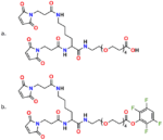Figure 12 shows the structures of PN10630, Bis-MAL-Lysine-dPEG®4-acid (a. top), and PN10631, Bis-MAL-Lysine-dPEG®4-TFP ester (b. bottom). These two compounds consist of lysine functionalized with maleimide groups on both amines and conjugated to an acid-terminated dPEG®4 linker on the carboxyl group of lysine.