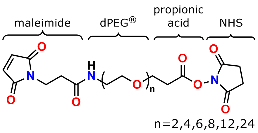 Figure 2 shows the general structure of Quanta BioDesign's MAL-dPEG®n-NHS ester maleimide crosslinker products that crosslink thiols and amines.