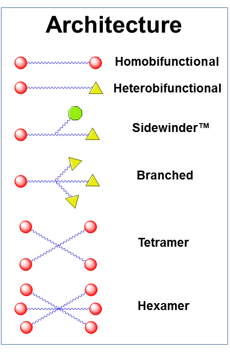 Figure 3: Available architectures for dPEG® products. Branched dPEG® products can have three (3) or nine (9) branches.