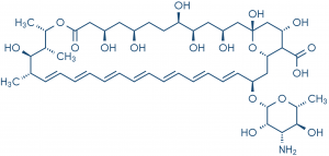 Figure 6: Amphotericin B. Molekuul_be/Shutterstock.com, used under license. Amphotericin B is an example of a hydrophobic anti-fungal agent that was made water-soluble by adding a short, hydrophilic dPEG® product to the molecule.