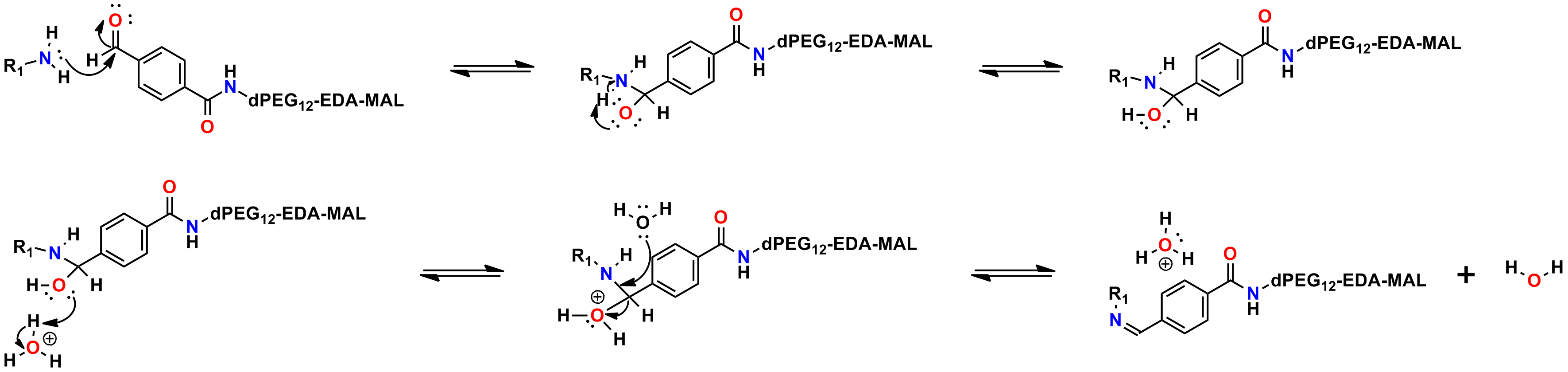 Figure 8 shows how PN10075, 4-formyl-benzamido-dPEG®12-MAL, reacts with an amine to form an imine (Schiff base). Electron movement is indicated by arrows.