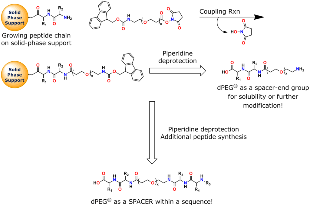 Our N-Fmoc-amido-dPEG®x-NHS esters are preactivated, Fmoc-protected amino-dPEG® acid building blocks for peptide synthesis, where the active ester is made from N-hydroxysuccinimide (NHS). This general application scheme shows how to use them in peptide synthesis on solid supports. They also work well in solution-phase peptide synthesis.