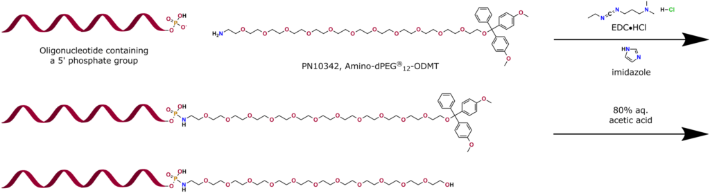 This application graphic shows PN10342, Amino-dPEG®12-ODMT, one of Quanta BioDesign's versatile building blocks and protected linkers, being used to modify an oligonucleotide. The free amine end of PN10342 couples to a 5' phosphate group on an oligonucleotide by using a combination of EDC•HCL and imidazole. The dimethoxytrityl (DMT) group removes cleanly using 80% aqueous acetic acid, exposing the terminal hydroxy of the discrete PEG spacer. Further modification can occur at this point, if required.