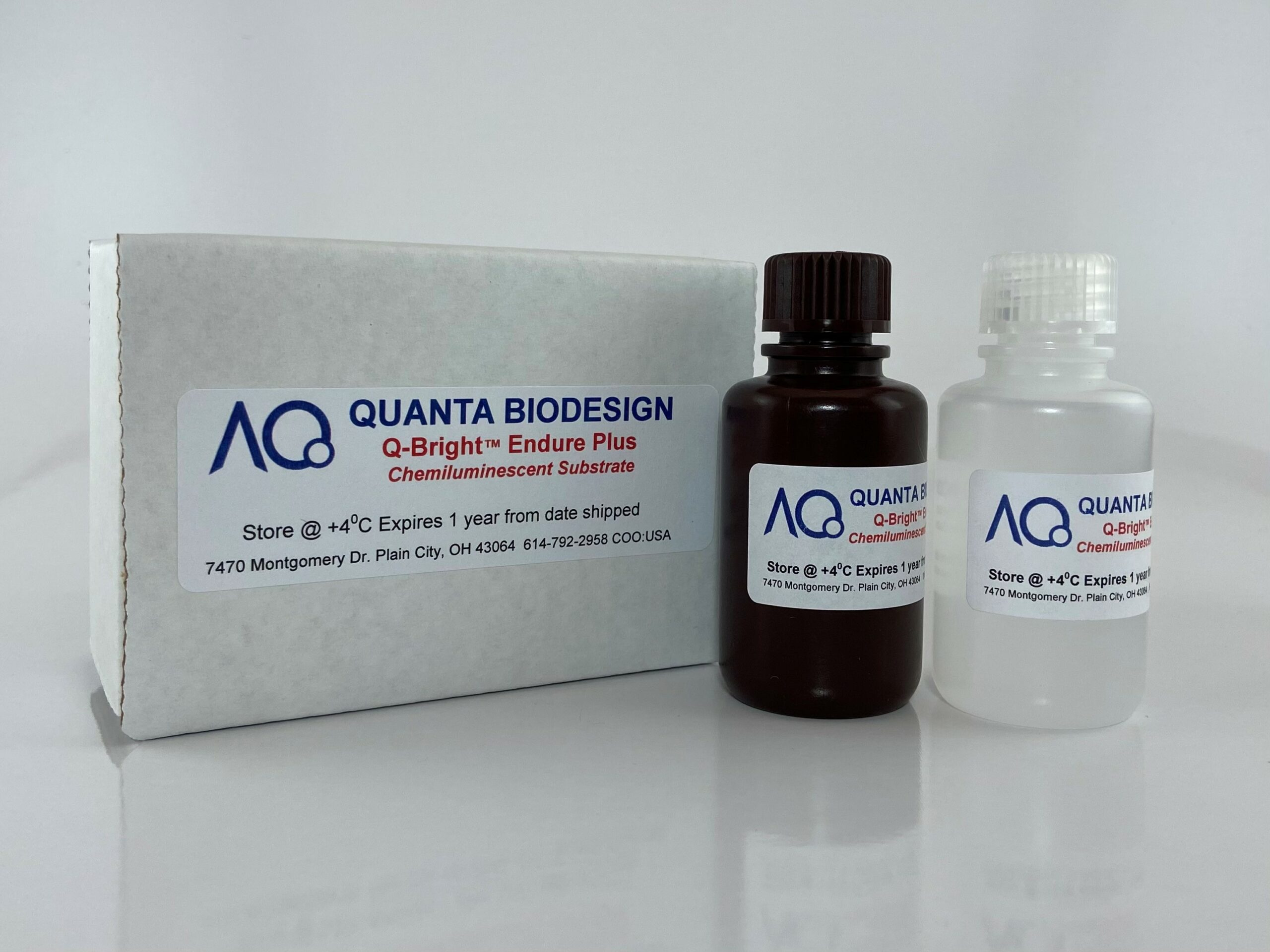 Q-Bright Endure Plus Chemiluminescent Detection Kit