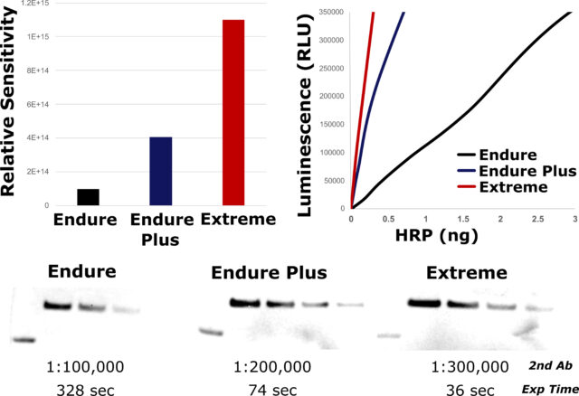 Graph showing sensitivity between Q-Bright Endure, Endure Plus and Extreme chemiluminescent kits
