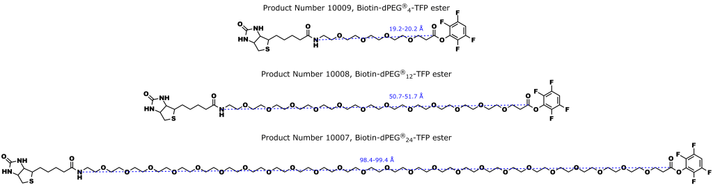 Figure 4: Quanta BioDesign's Biotin-dPEG®n-TFP ester line of biotinylation products. As discussed in the text, these products offer superior performance compared the comparable NHS esters.