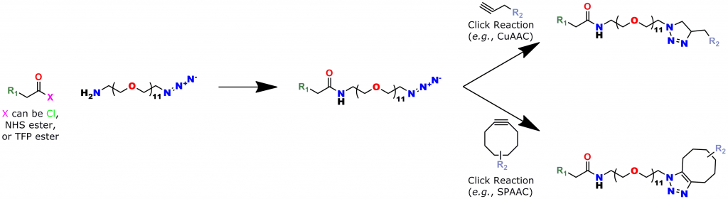 This reaction scheme shows how to use Quanta BioDesign's click chemistry crosslinking reagent, product number 10524, Azido-dPEG®11-amine. In the scheme, the amine end of molecule is reacted with a carboxylate group forming an amide bond with R1. Subsequently, the azide end of the molecule reacts by click chemistry (either copper(I)-catalyzed or strain-promoted azide-alkyne cycloaddition) to crosslink R1 with R2.