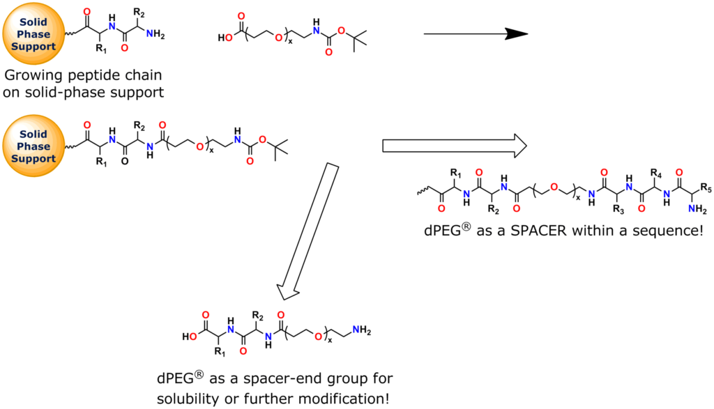 This image shows a solid-phase peptide synthesis application using Quanta BioDesign's t-boc-N-amido-dPEG®x-acid building blocks.